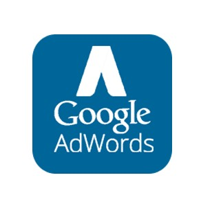 Kampania Google AdWords 750