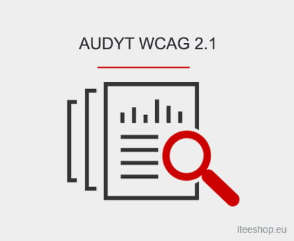 AUDYT WCAG 2.1