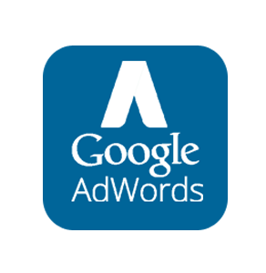 Kampania Google AdWords 1250